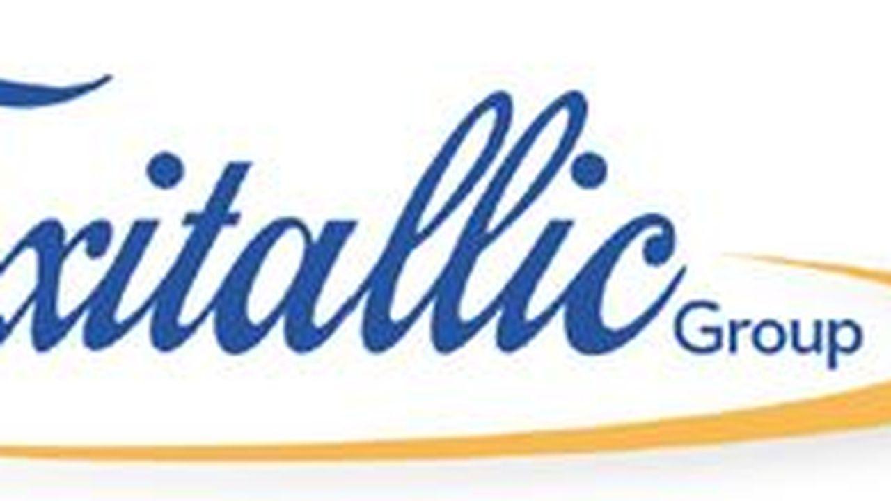 11202_1359035664_logo-flexitallic.JPG