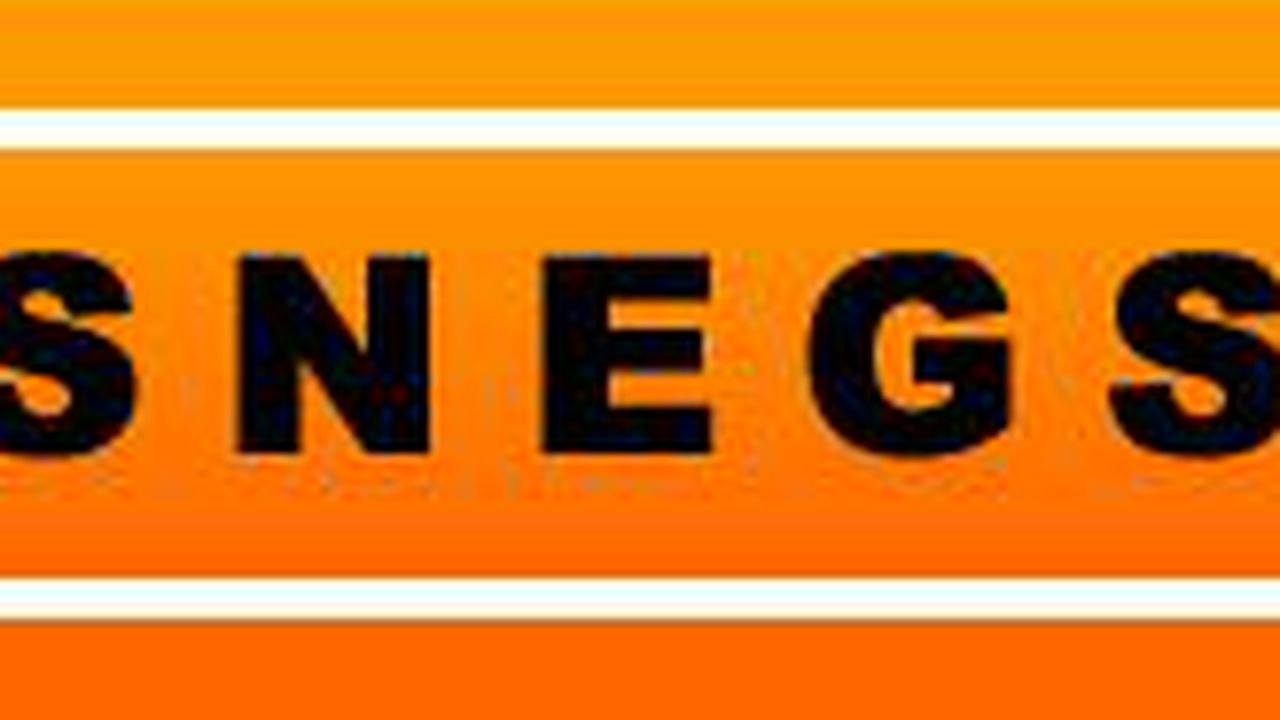11028_1358527429_logo-snegso.JPG