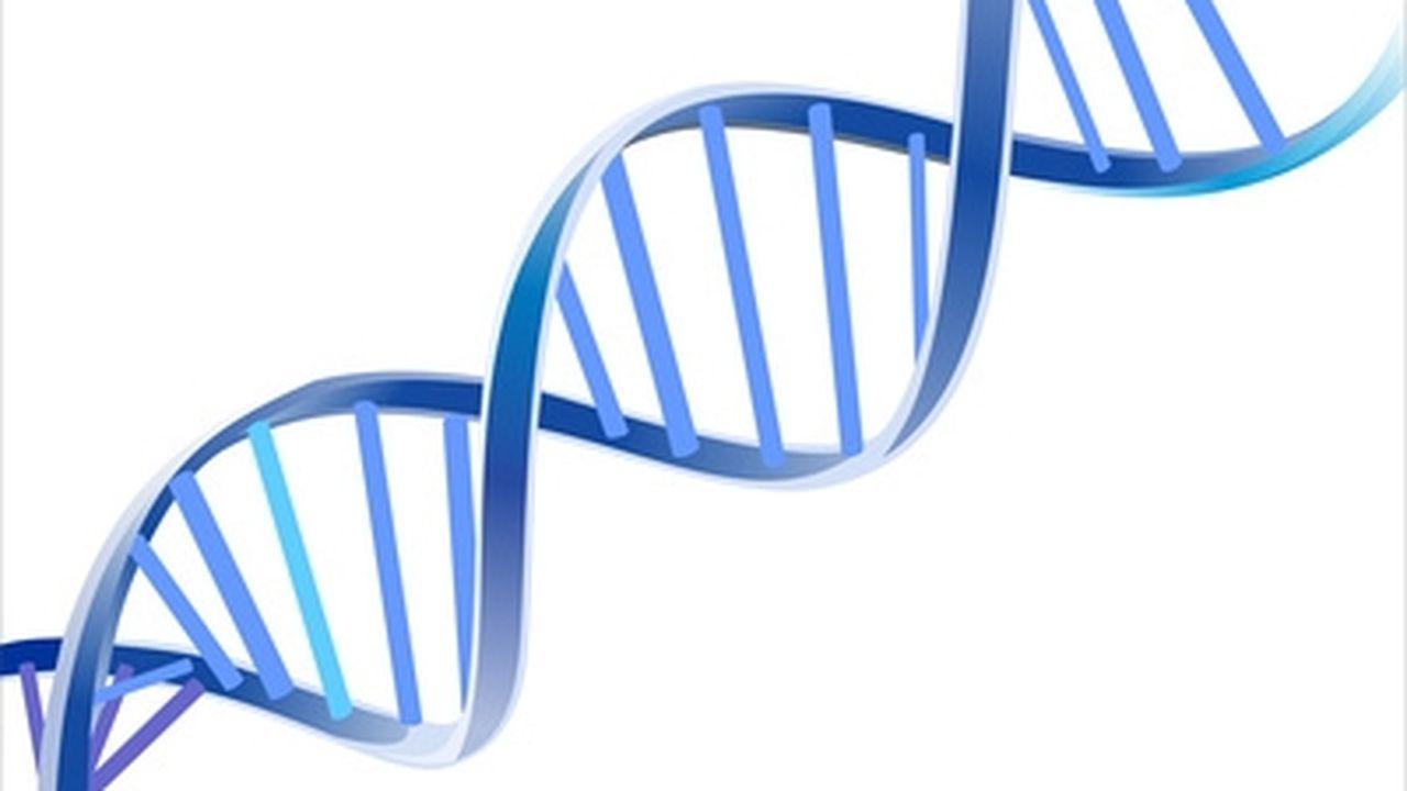 13388_1365521537_gene.JPG
