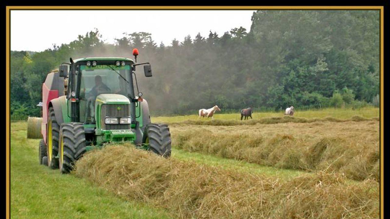14254_1369754248_tracteur.jpg