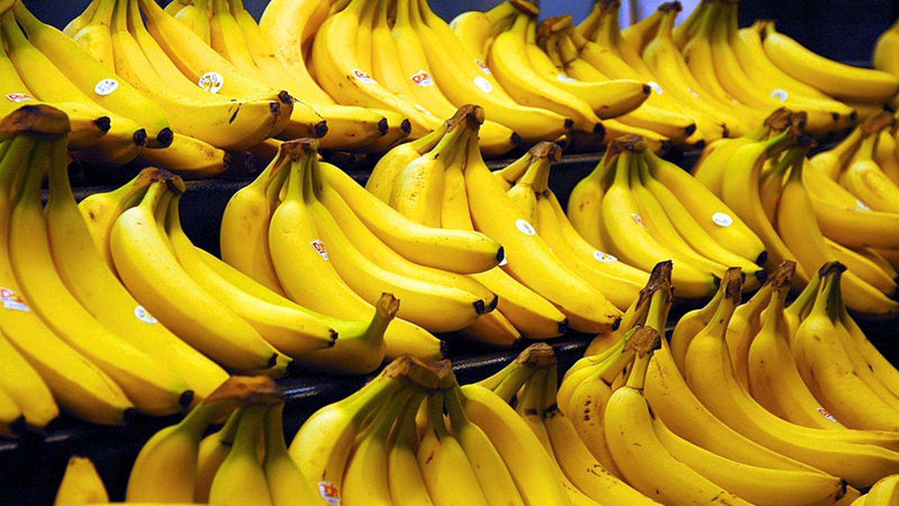 14997_1372843391_800px-bananas.jpeg