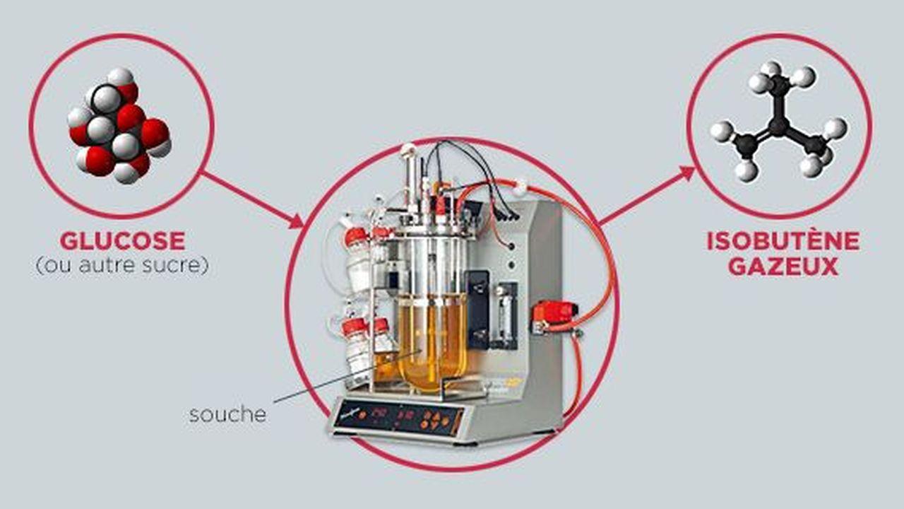 15363_1373970837_global-bioenergies.JPG