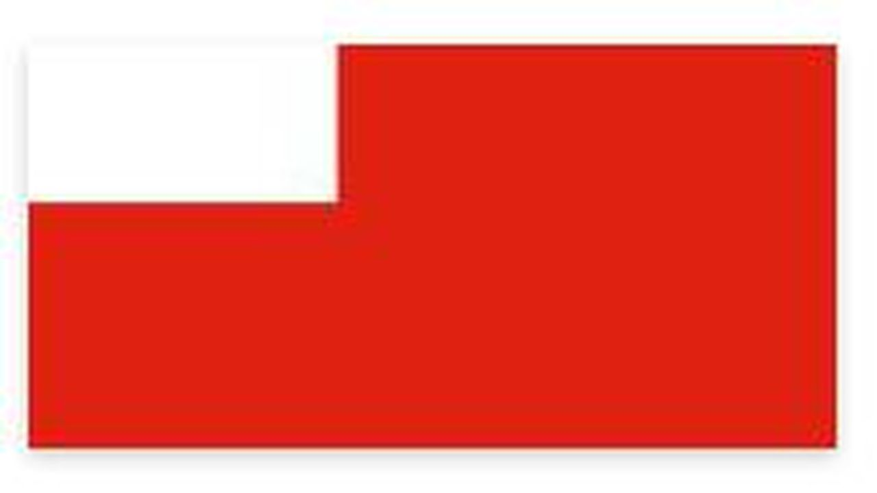 15450_1374156139_drapeau-abu-dahbi.JPG