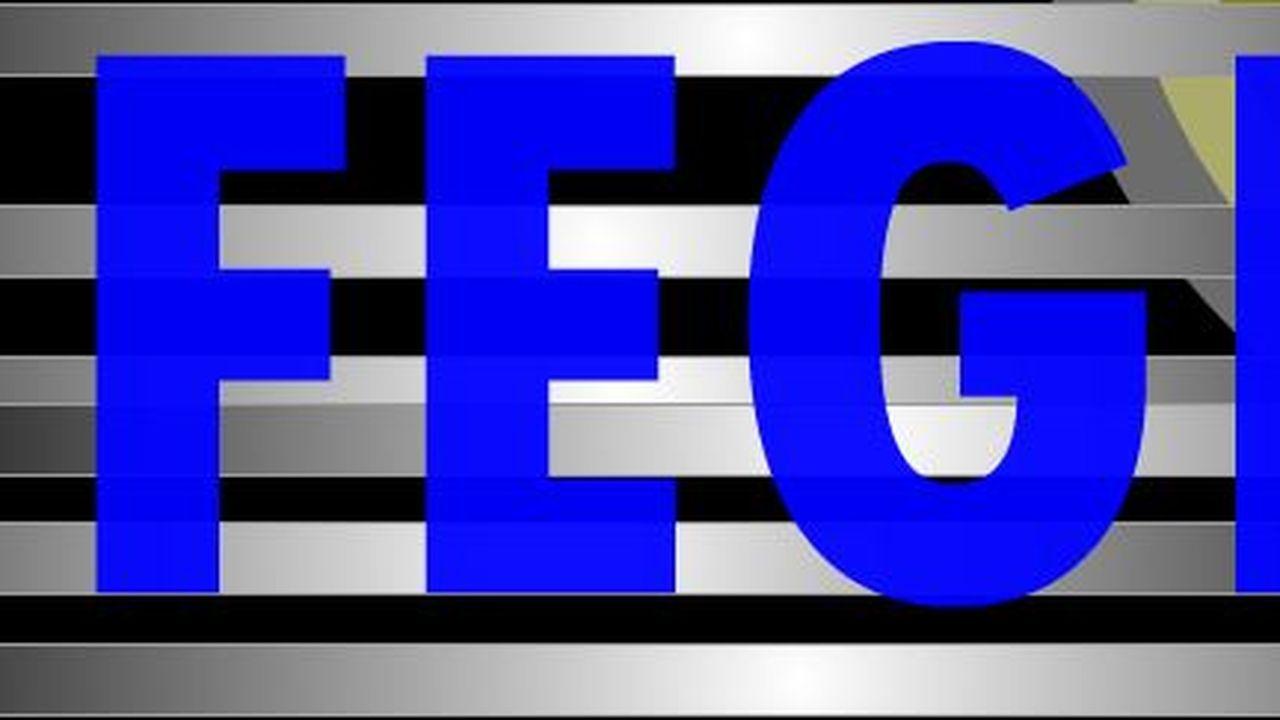 16939_1382028207_logo-fege.JPG