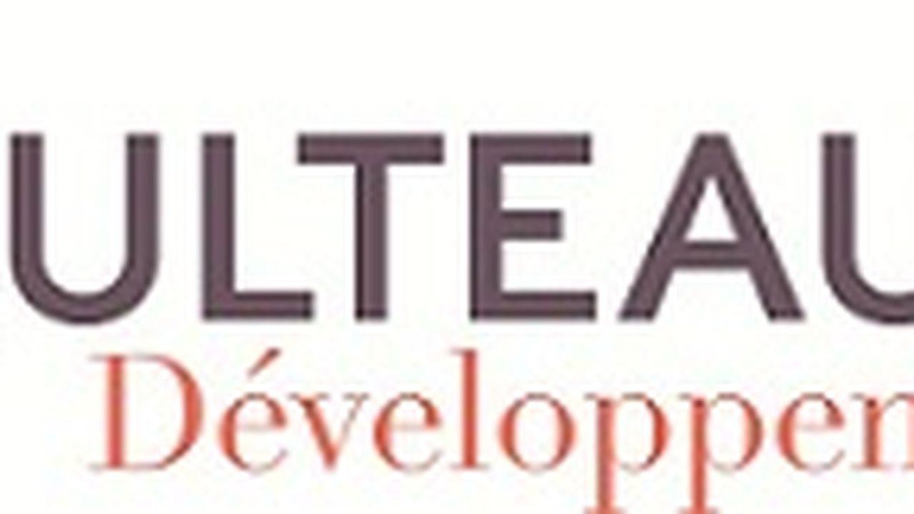 21977_1409842705_logo-bulteau-developpement.jpg