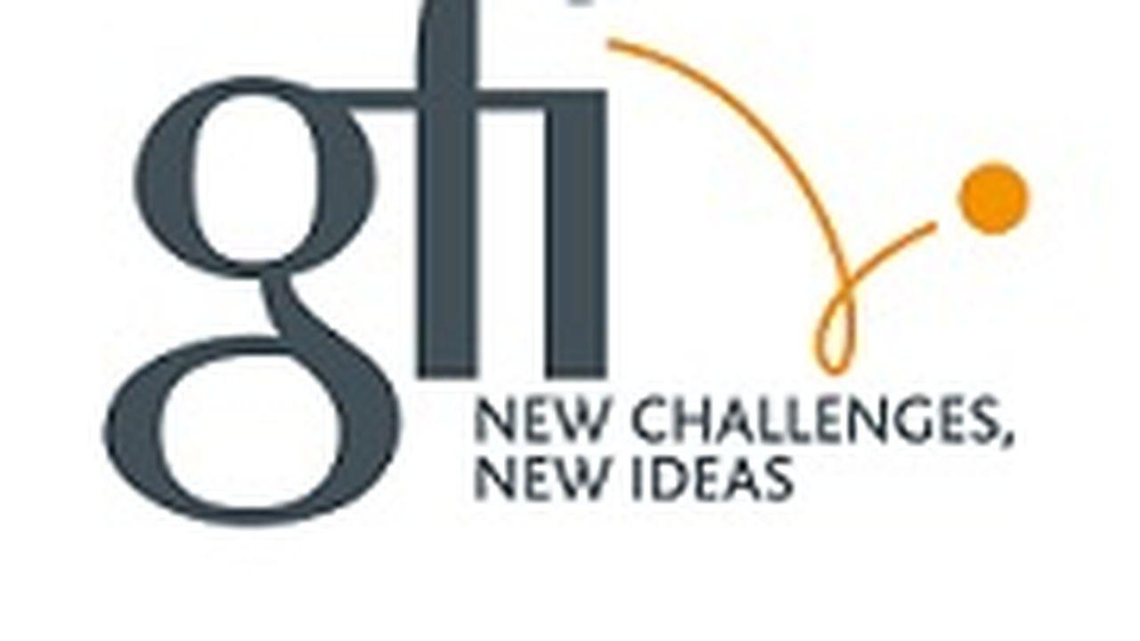 22425_1411640140_logo-gfi-2011.jpg