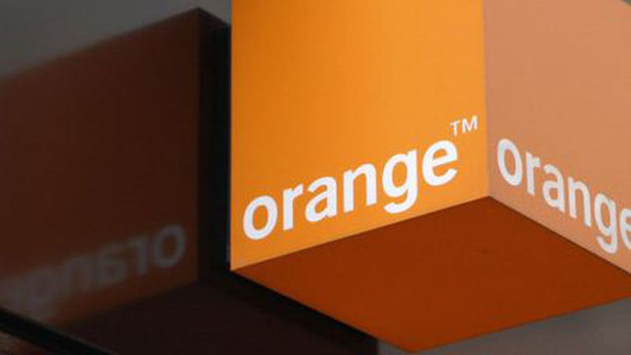 23978_1418920197_orange.JPG