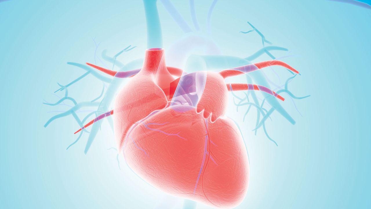 Cardiawave.jpg