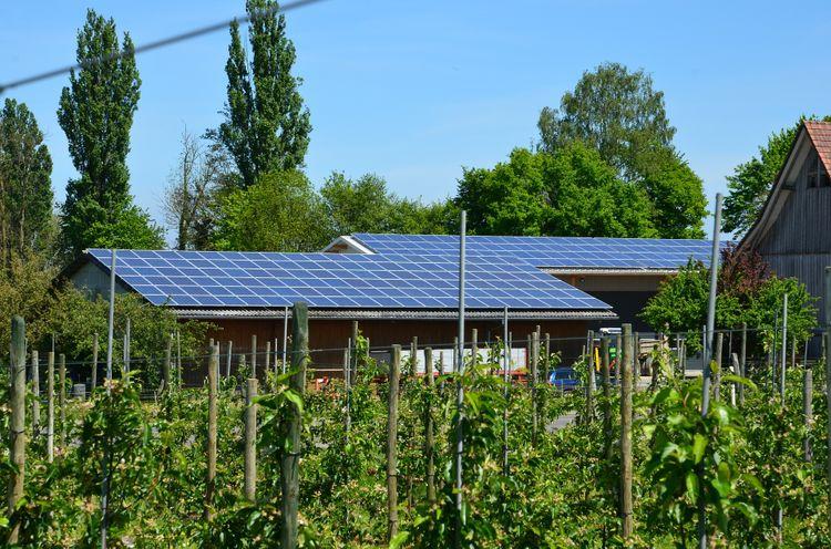 « La transition énergétique, une chance pour l'agriculture »