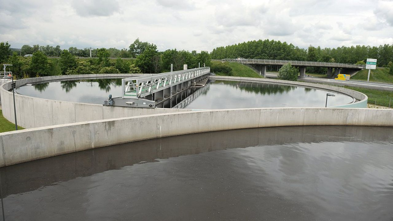 La pollution domestique des rivières est quasiment résorbée grâce aux stations d'épuration qui ont eu raison de l'ammonium, et à l'interdiction des phosphates dans les détergents