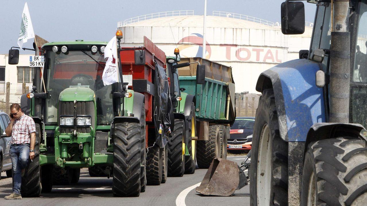 La fronde anti-huile de palme, une parade protectionniste