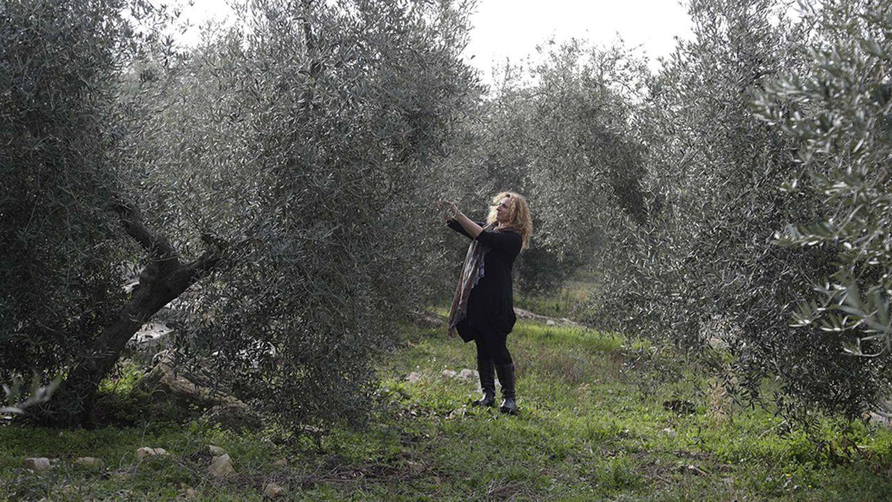 Politique agricole commune : quelle place pour l'Europe de Sud ?