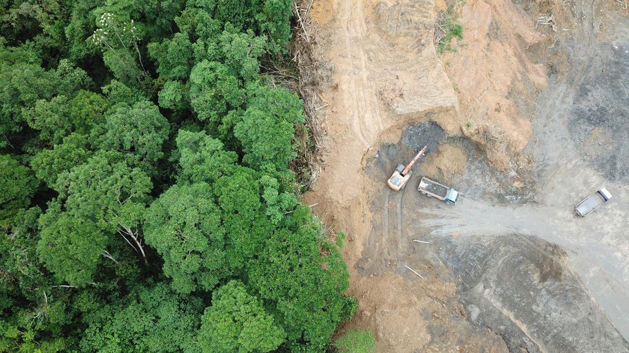 La déforestation est responsable d'une partie de la hausse des émissions de gaz à effet de serre.