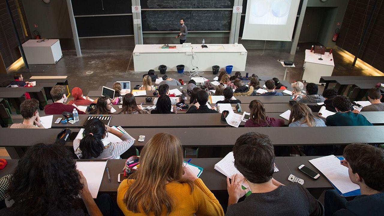 Le loyer, évalué à 597 euros mensuels en moyenne, représente plus de 60 % du budget étudiant