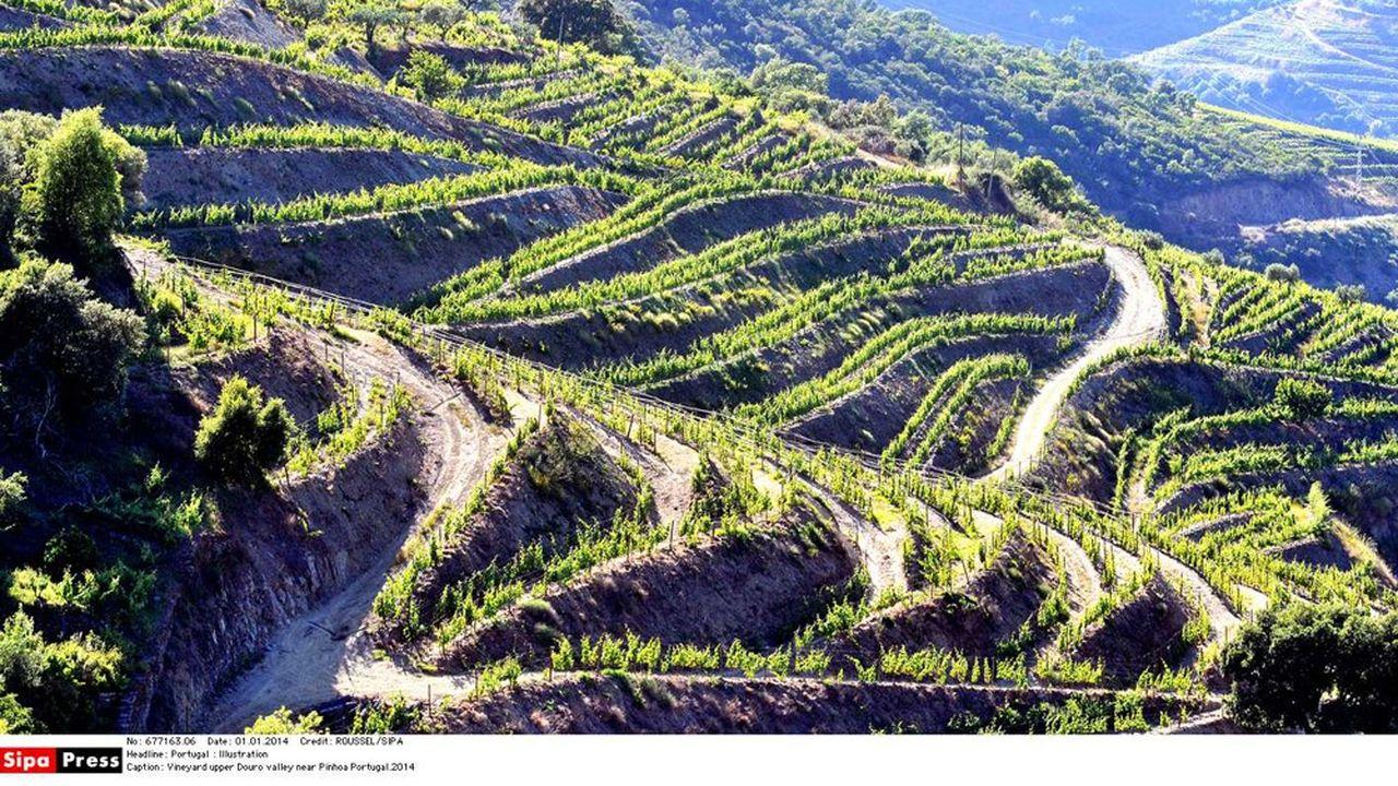 La vallée du Haut Douro, inscrite au patrimoine mondial de l'Unesco.