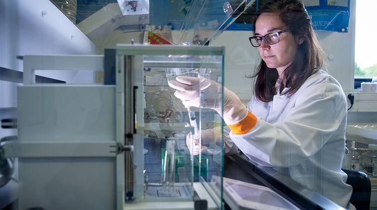 Oncodesign : quand la BioTech soigne son développement