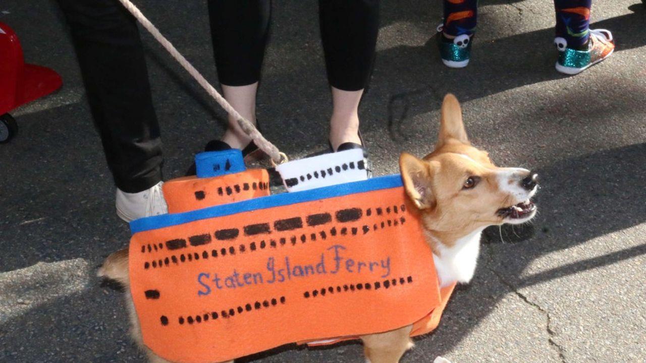Moment fort des fêtes d'Halloween à Manhattan, la «Tompkins Square Halloween Dog Parade» se tient depuis 28 ans dans la ville.