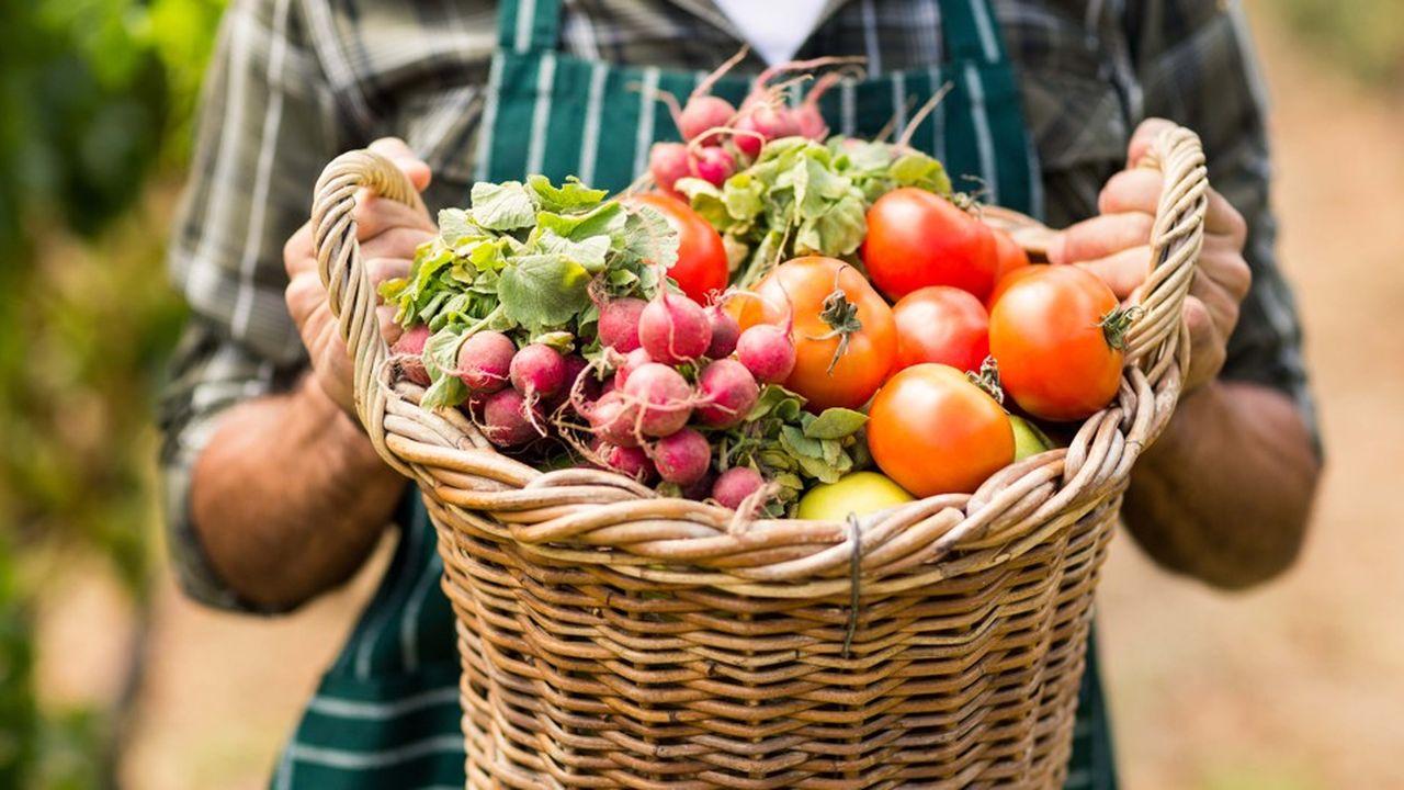 «Les résultats suggèrent qu'une alimentation riche en aliments bio pourrait limiter l'incidence des cancers», est-il précisé dans un communiqué de presse