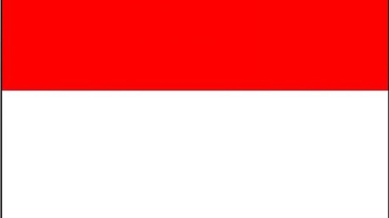Le drapeau 'Rot un wiss' (rouge et blanc, en alsacien), symbole de l'identité alsacienne, est arboré par les régionalistes.