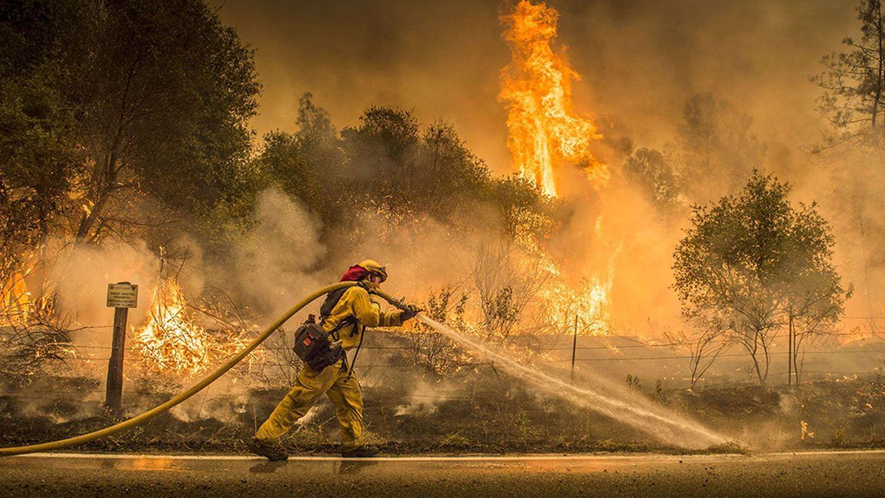 PANO-Californie-feux.jpg