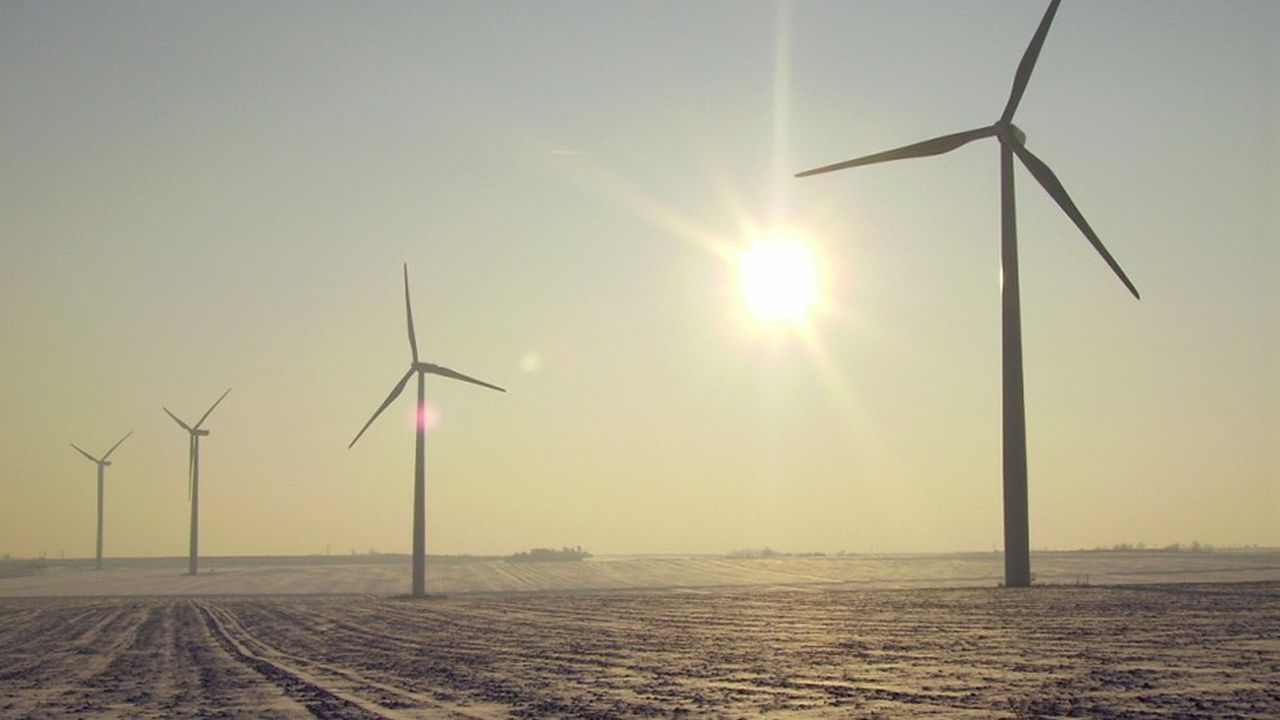 La société d'économie mixte Sergies permet aux particuliers d'investir dans le parc éolien de Rochereau, dans la Vienne.
