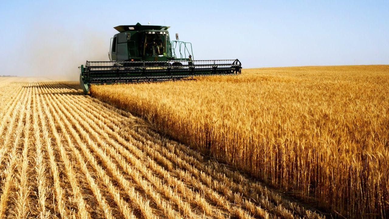 L'agriculture de notre pays, c'est la plus grande surface cultivée en Europe.