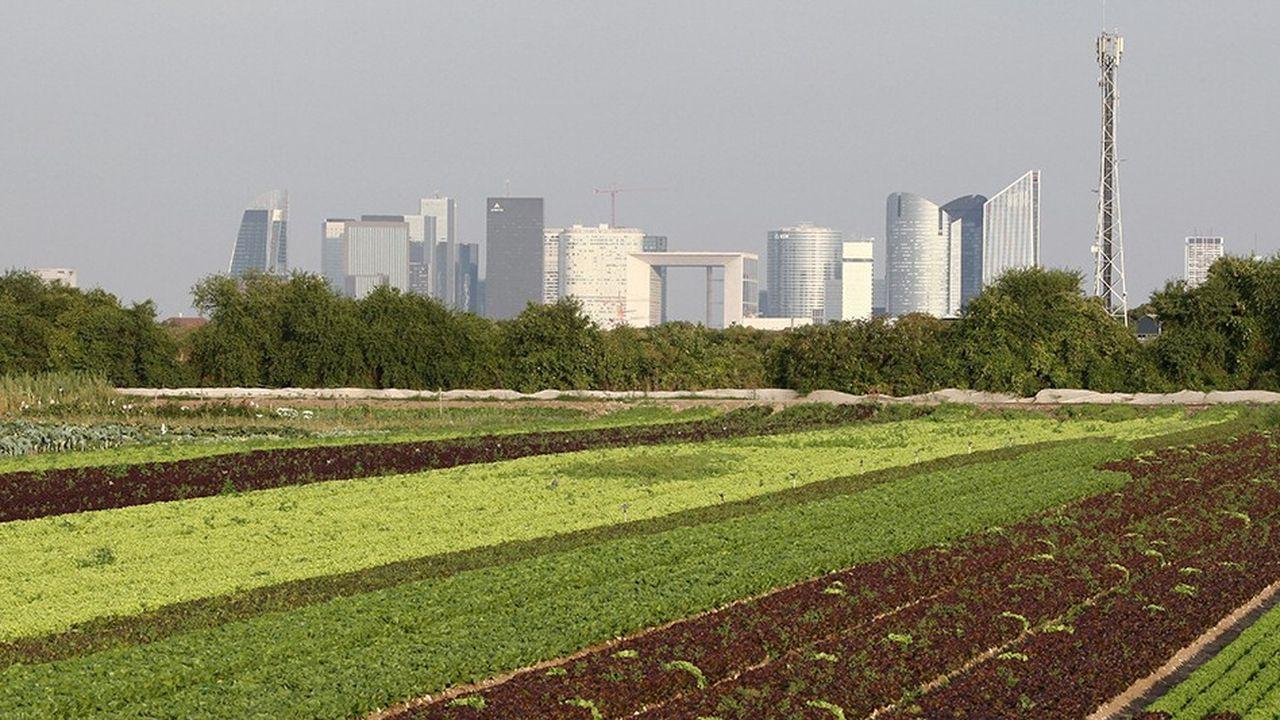 La région a adopté la semaine dernière un Pacte agricole de 150 millions d'euros pour la période 2018-2022, à raison de 30 millions d'euros investis chaque année.