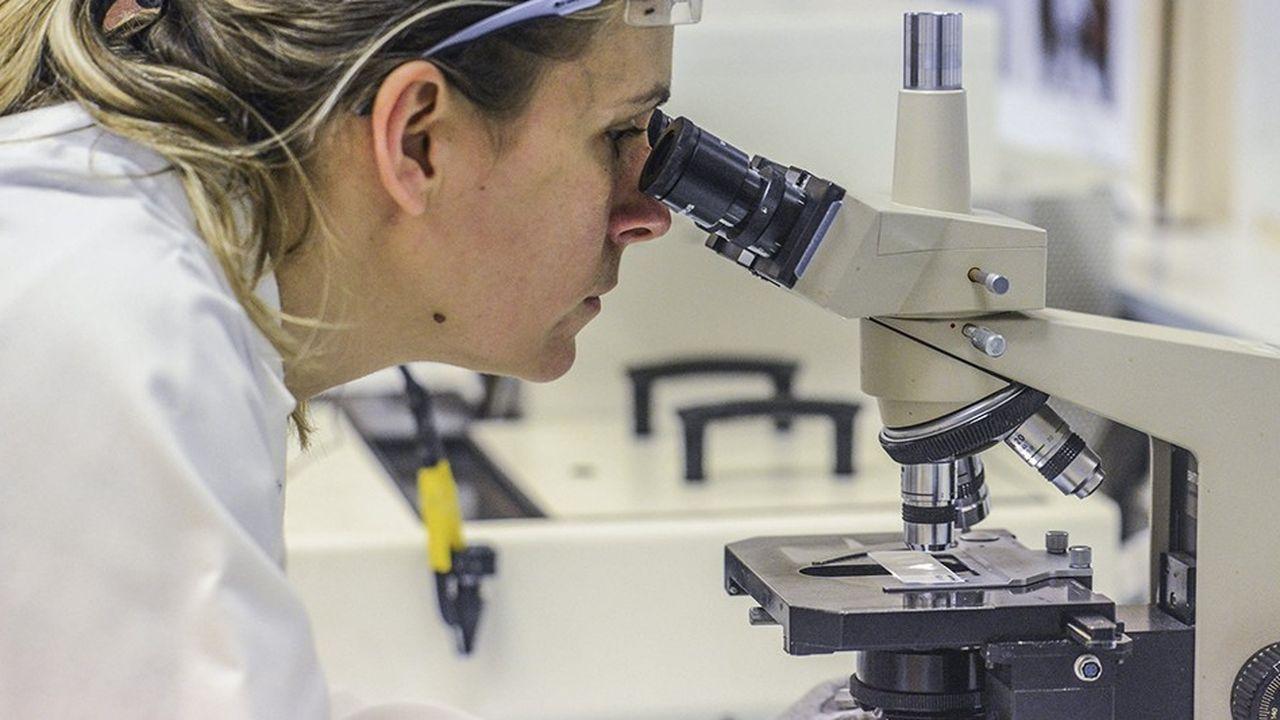 Le député LREM Cédric Villani s'est dit être plutôt favorable à l'introduction d'incitations en faveur de l'embauche des femmes dans la science.