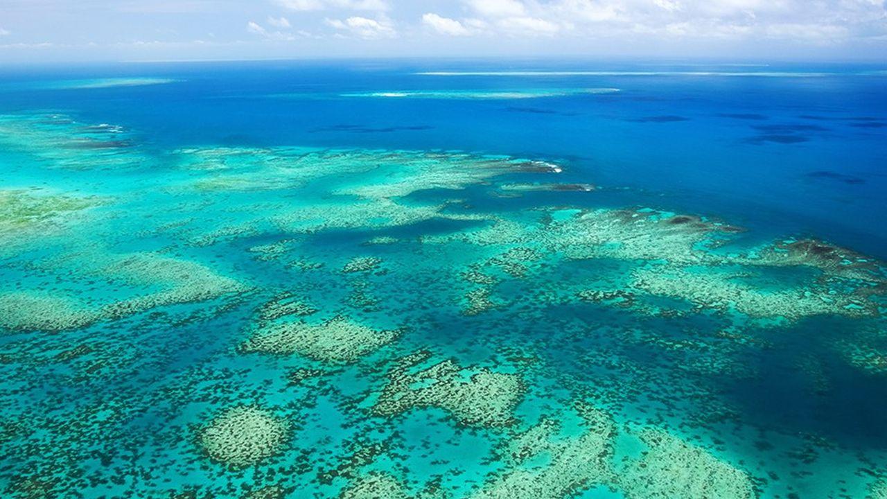 L'Australie est depuis longtemps victime du fameux « trou » dans la couche d'ozone, de canicules extrêmes, d'incendies ou d'inondations catastrophiques récurrents, de ravages sur la Grande barrière de corail et de menaces majeures sur sa faune dues au réchauffement climatique.