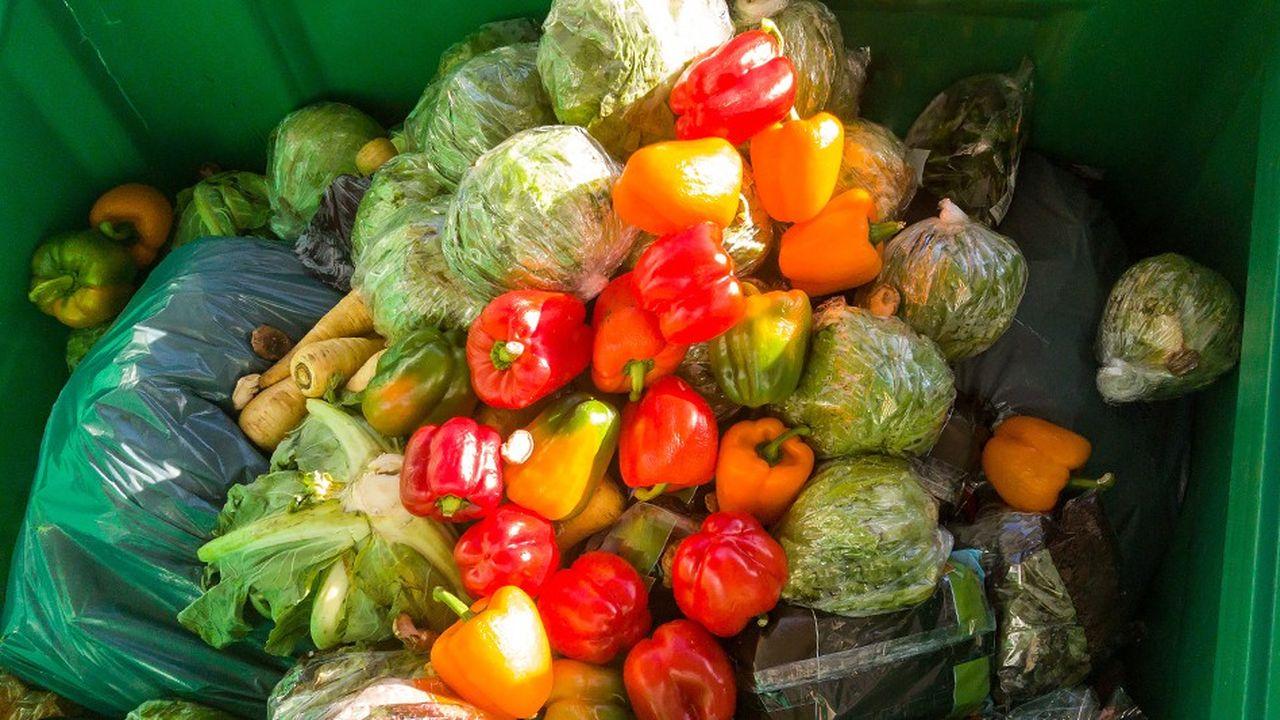 2199323_le-gaspillage-alimentaire-reste-un-defi-majeur-pour-la-planete-web-tete-0302146630604.jpg