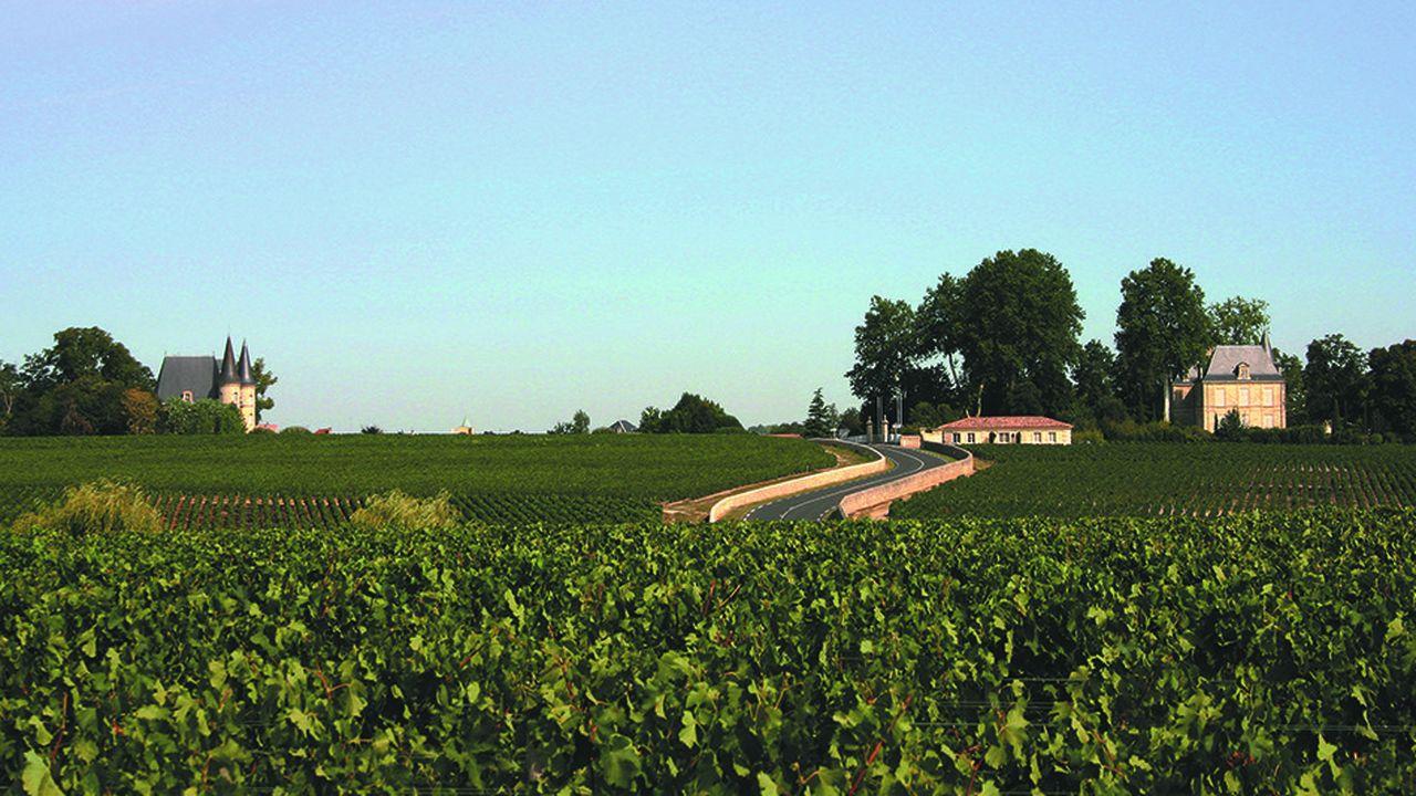 Sur les 7.000 propriétés viticoles de Gironde, environ 10% ouvrent leurs portes car générer des ventes à la propriété est devenu un business en soi.
