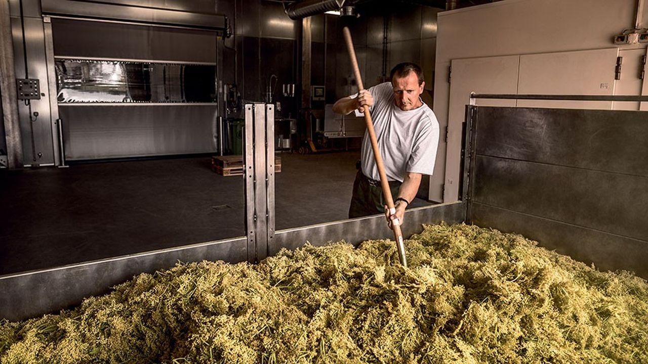 Centre des plantes du groupe Ricola. La recette du célèbre bonbon n'a pas changé depuis 1940, lorsque le fondateur de la société, Emil Richterich, l'avait élaborée à partir de 13plantes suisses.