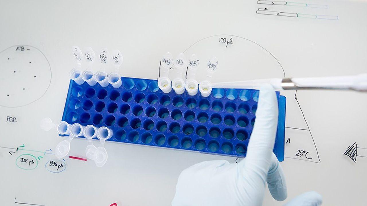 Labellisé FUI, le projet Colornat qui implique BGene, Sensient et le TWB, vise à mettre au point des colorants biosourcés pour le secteur des cosmétiques.