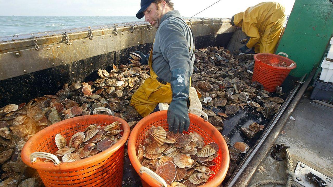 Les pêcheurs Français ont obtenu des Britanniques qu'ils se retirent de la zone de pêche jusqu'au 1ernovembre.