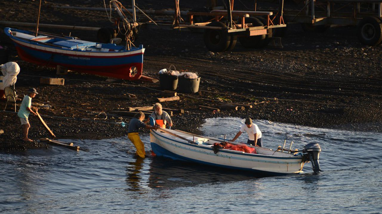 2209236_ca-se-passe-en-europe-litalie-importe-80-du-poisson-quelle-consomme-web-tete-0302322527218.jpg