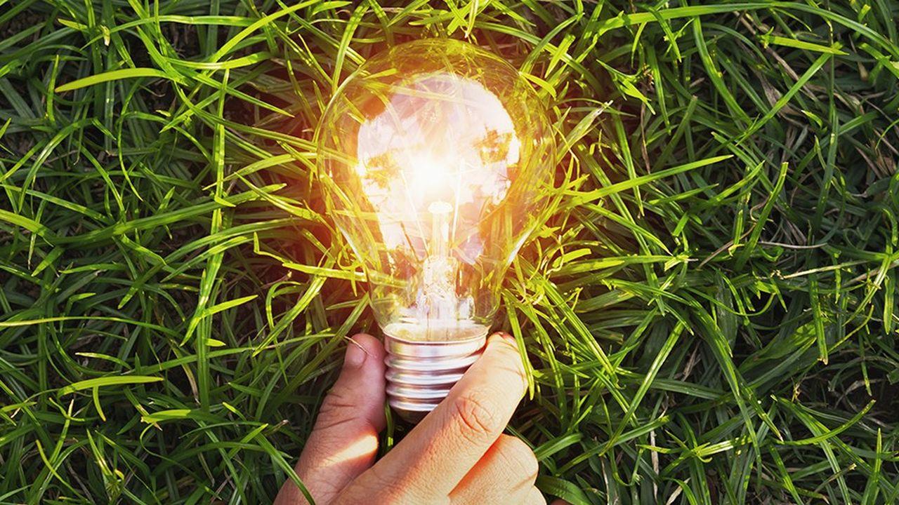 Greenpace a placé sur le podium trois petits fournisseurs, Energie d'Ici, Enercoop et Ilek.
