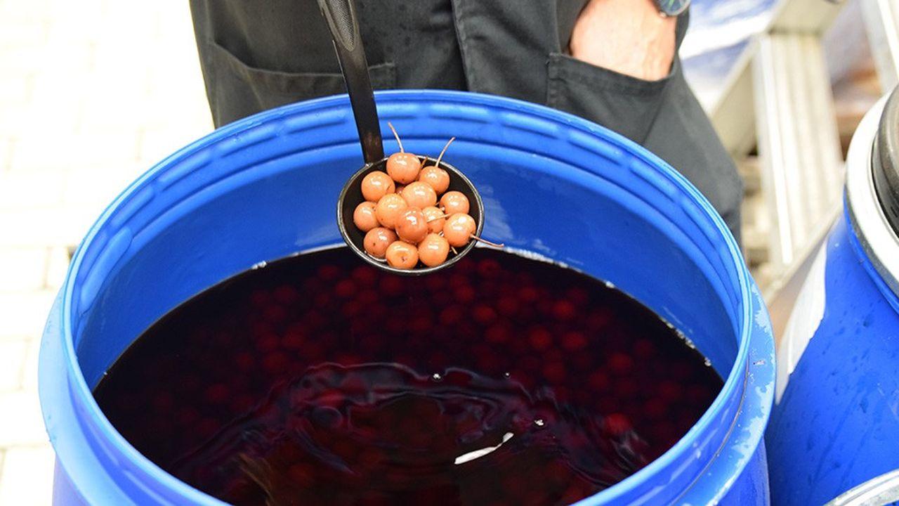 Les cerises à l'eau-de-vie entrent dans la composition de cocktails et de chocolats.