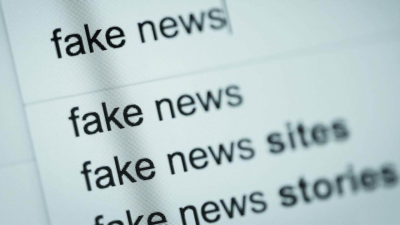 La loi sur les «fake news» a été votée cet été par l'Assemblée nationale.
