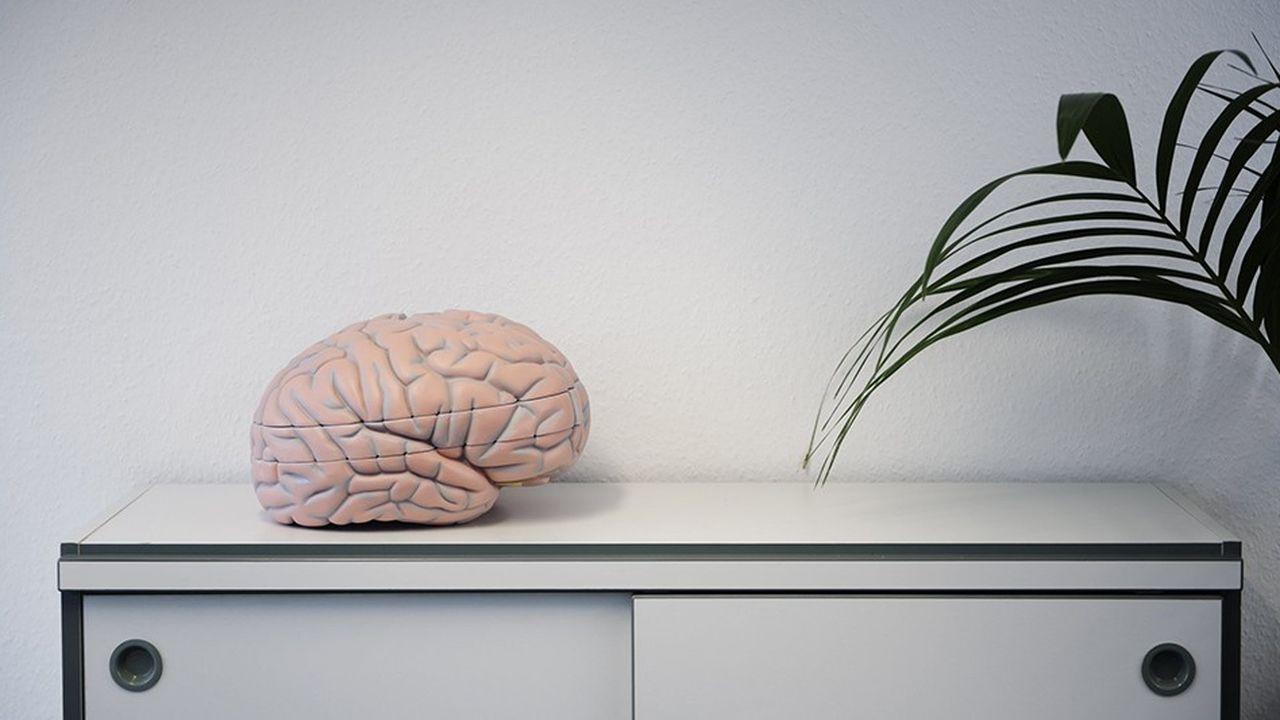 Cent seize partenaires, huit cents chercheurs européens disséminés dans une vingtaine de pays, un coût total estimé à 1,2 milliard d'euros : le Human Brain Project, aujourd'hui au milieu du gué, est une entreprise colossale.