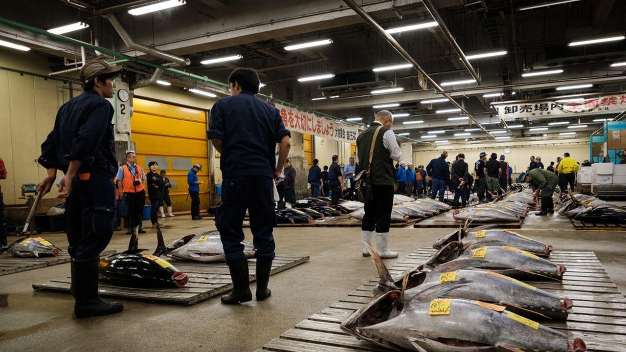 Chaque jour 3.000 tonnes de marchandises et notamment 480 espèces de poissons s'échangeaient sur le site.
