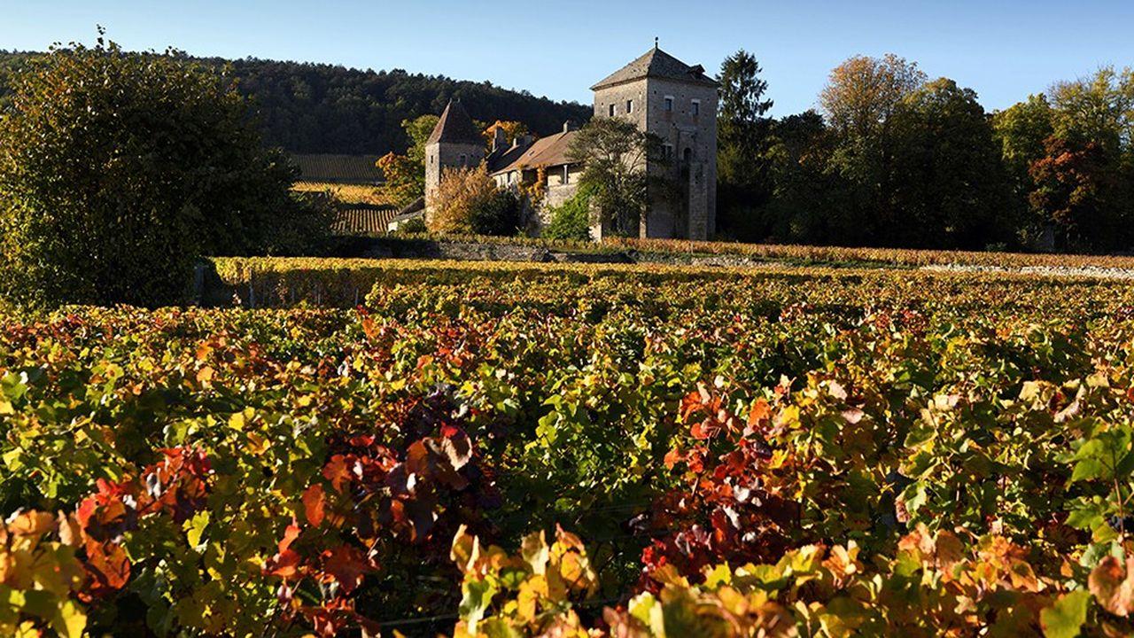 2212093_vin-martin-bouygues-met-la-main-sur-le-domaine-henri-rebourseau-web-tete-0302377477218.jpg