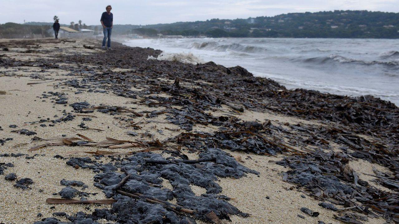 La plage de Pampelonne, en face de Ramatuelle, est l'une des plus touchée par la pollution aux hydrocarbures