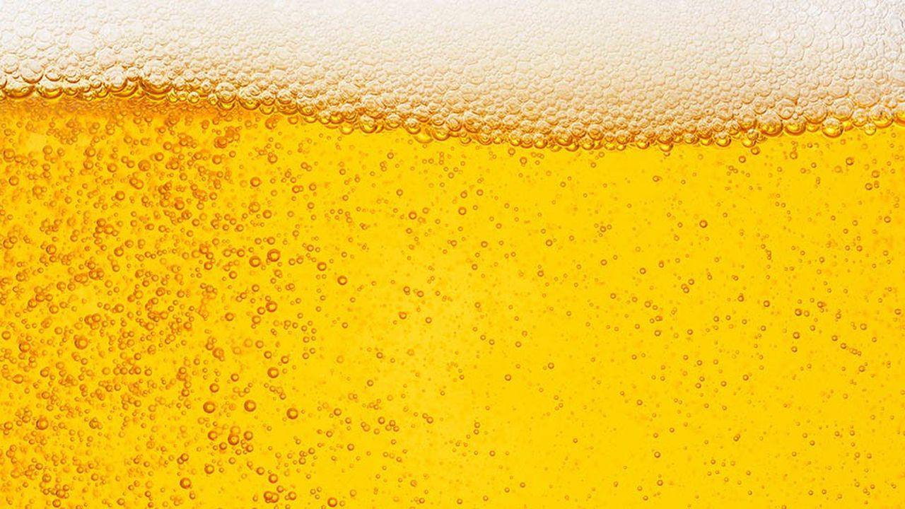 La production mondiale de bière pourrait reculer de 4% d'ici 2100 à cause du réchauffement climatique.