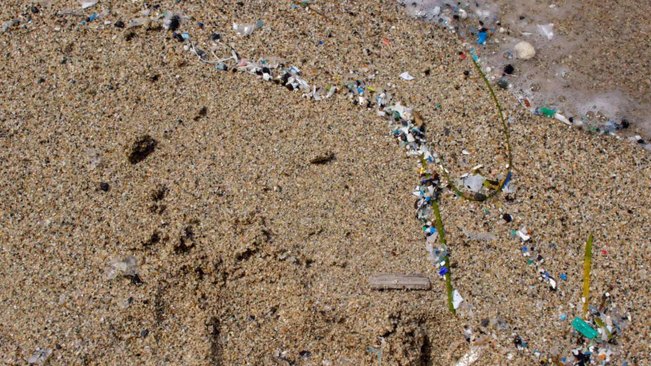 Des microplastiques retrouvés dans les estomacs humains