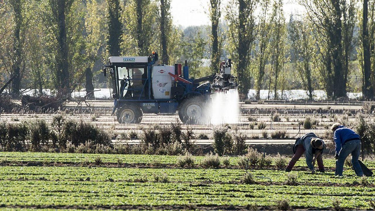 Epandage de pesticides dans un champ en Loire-Atlantique.