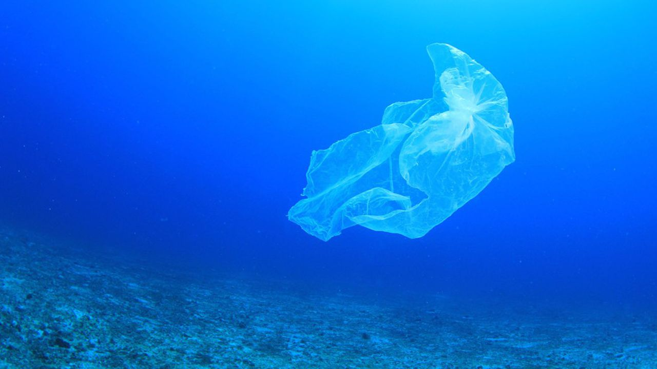 «Lutter contre la pollution plastique de nos espaces marins est aujourd'hui une priorité.»