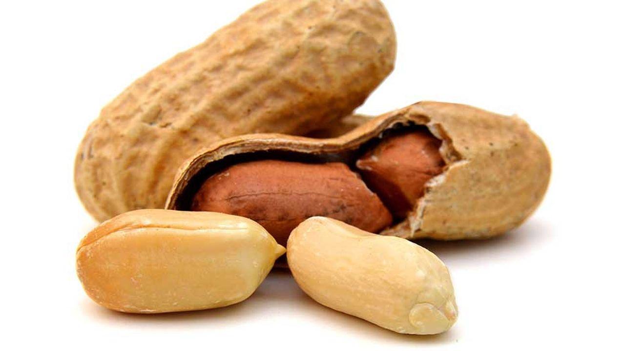 La panacée d'Aimmune Therapeutics, c'est une molécule, l'AR101, dérivée des protéines d'arachide.
