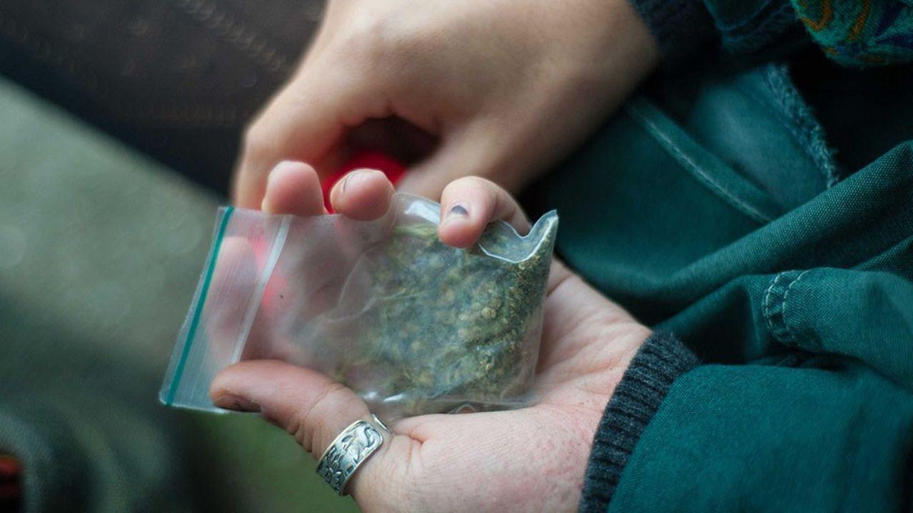 Selon l'OFDT, l'usage de cannabis «persiste après l'entrée dans la vie professionnelle»