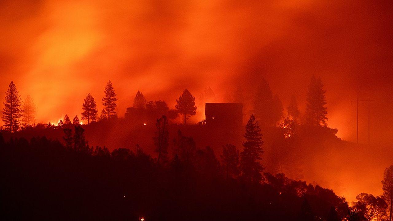 Les «méga-incendies» de forêt, comme ici en Californie, pèsent lourd dans le bilan carbone de la planète. Les émissions de CO2 imputables aux feux de forêts se sont élevées à 7,7 gigatonnes en 2016.