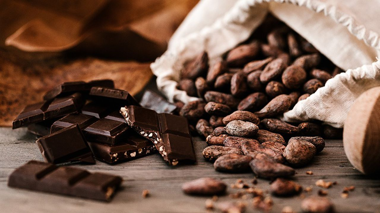 Les plantations de noisetiers permettront à Pariès d'assurer ses besoins en pâtisserie chocolaterie, voire ceux d'autres chocolatiers locaux.